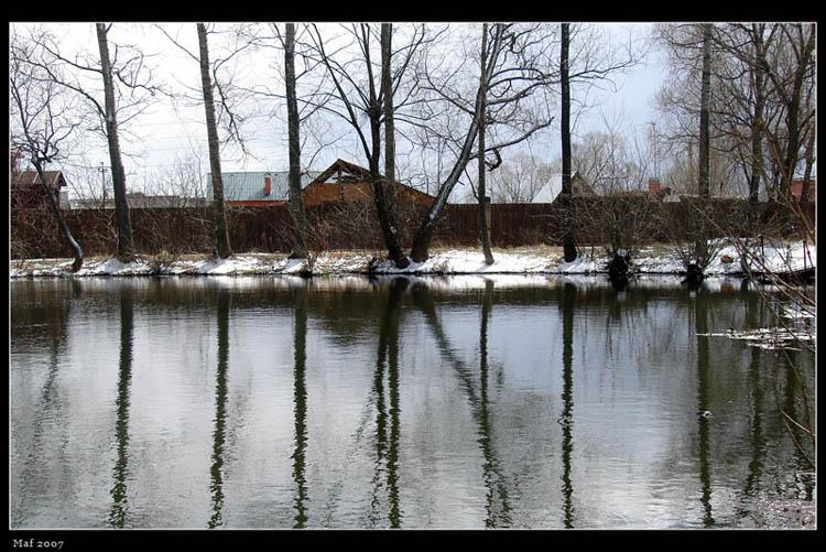 "фото ""Деревья. Симметрично."" метки: пейзаж, весна, вода"