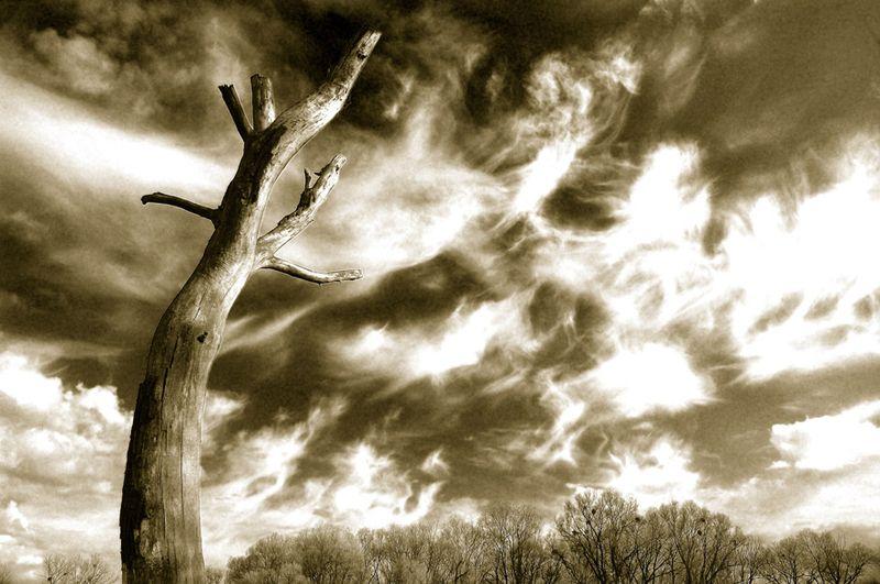 "photo ""Sky art"" tags: landscape,"