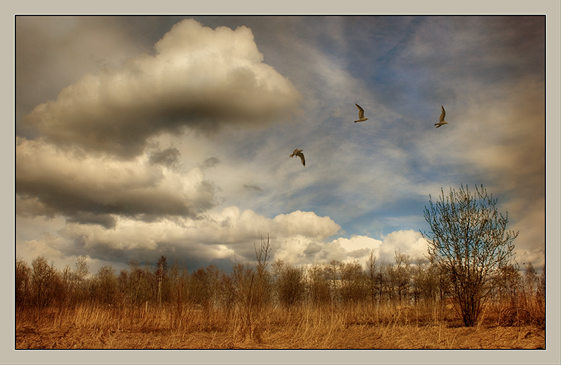"""photo """"Spring"""" tags: landscape, clouds, spring"""