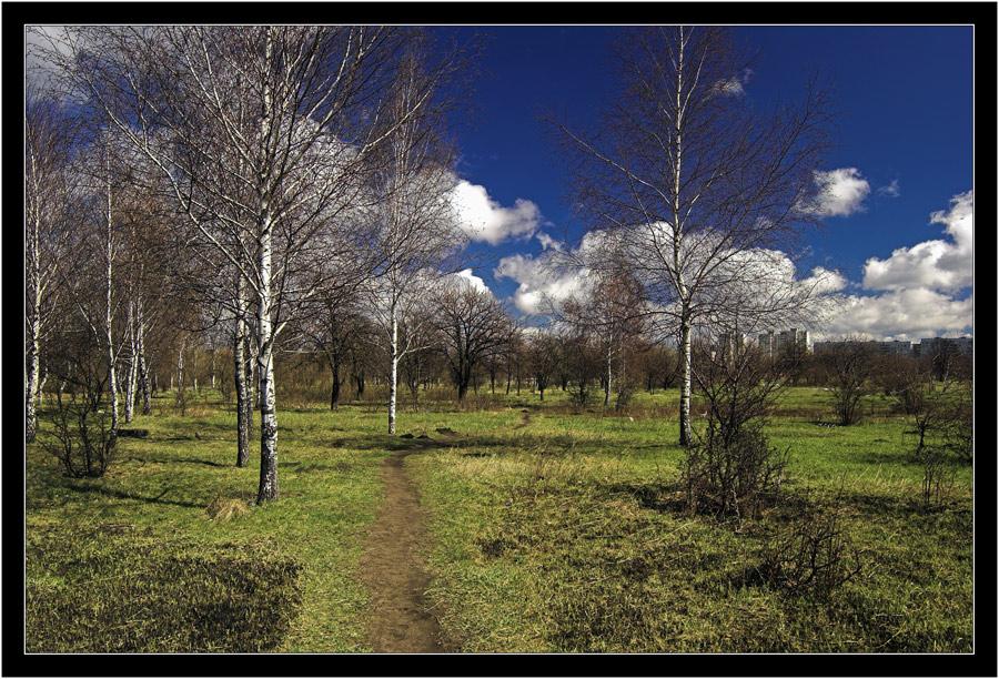 "photo ""Awakening"" tags: landscape, spring"