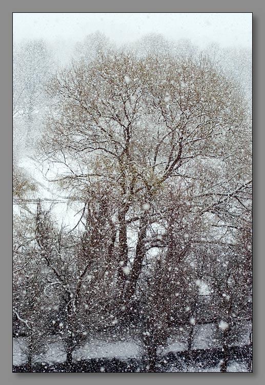 "фото ""Апрельский снегопад"" метки: пейзаж, город, весна"