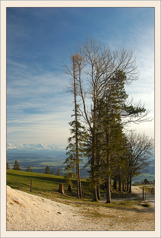 """photo """"***"""" tags: landscape, mountains, spring"""