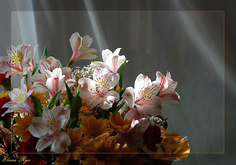 """фото """"Весенние цветы"""" метки: натюрморт,"""