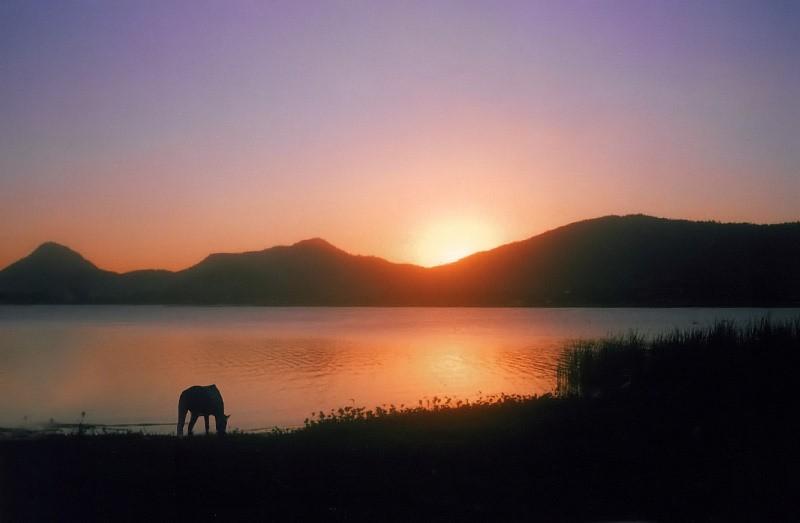 "фото ""Silent Silhouettes"" метки: пейзаж, вода, закат"