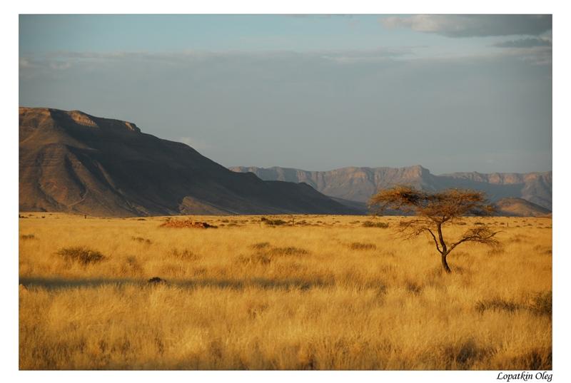 """фото """"Before sunset mood of the nature"""" метки: пейзаж, путешествия, Африка"""