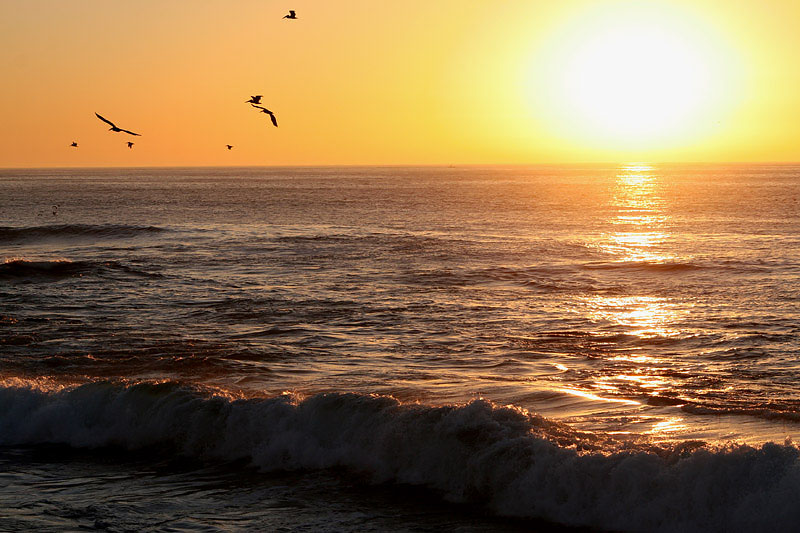 """photo """"Pacific sunset"""" tags: travel, landscape, North America, sunset"""