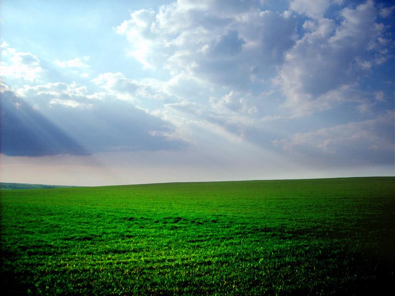 """фото """"Green Green Grass"""" метки: пейзаж, весна"""