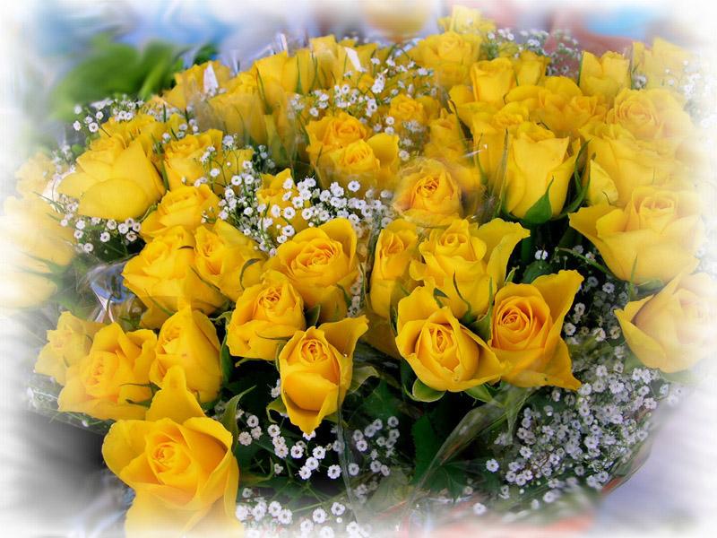 Поздравительная открытка с днем рождения цветы желтые розы женщине, видео