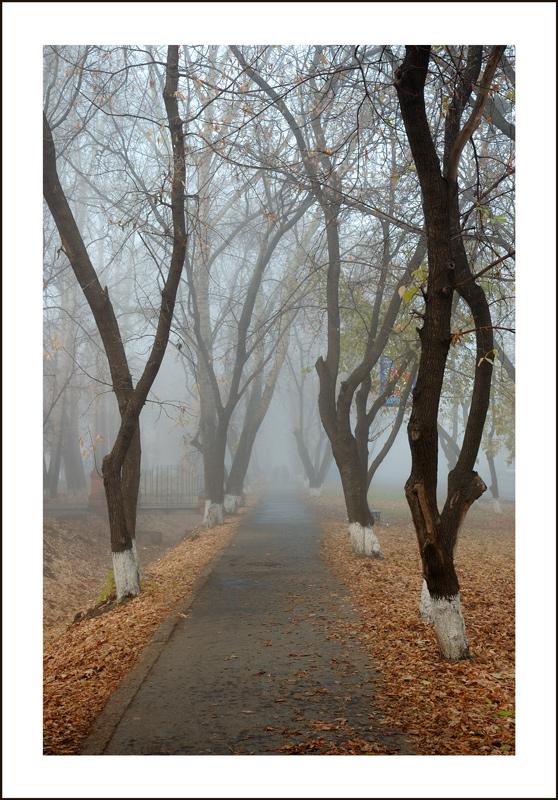 """фото """"Пластика"""" метки: город, пейзаж, осень"""
