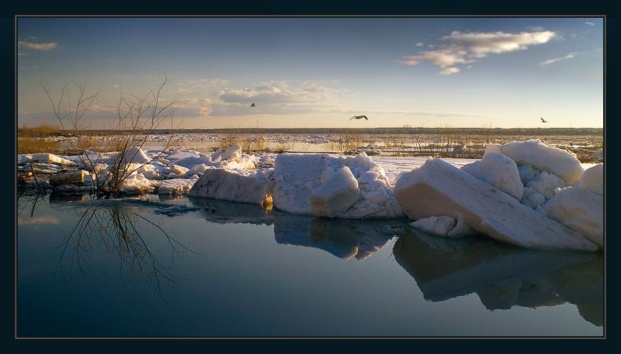 """photo """"Symbolы of spring"""" tags: landscape, spring"""