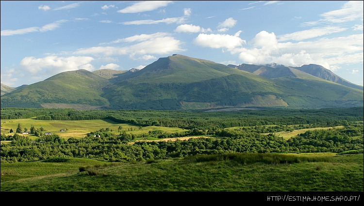 """фото """"Ben Nevis"""" метки: пейзаж, горы, лес"""