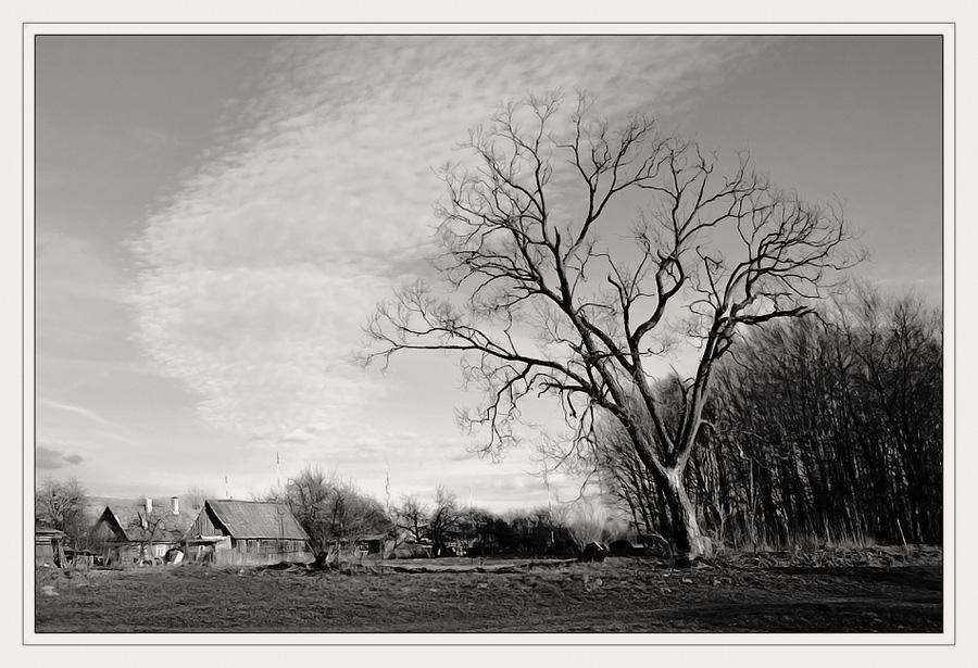 "photo ""Existence."" tags: black&white, landscape,"