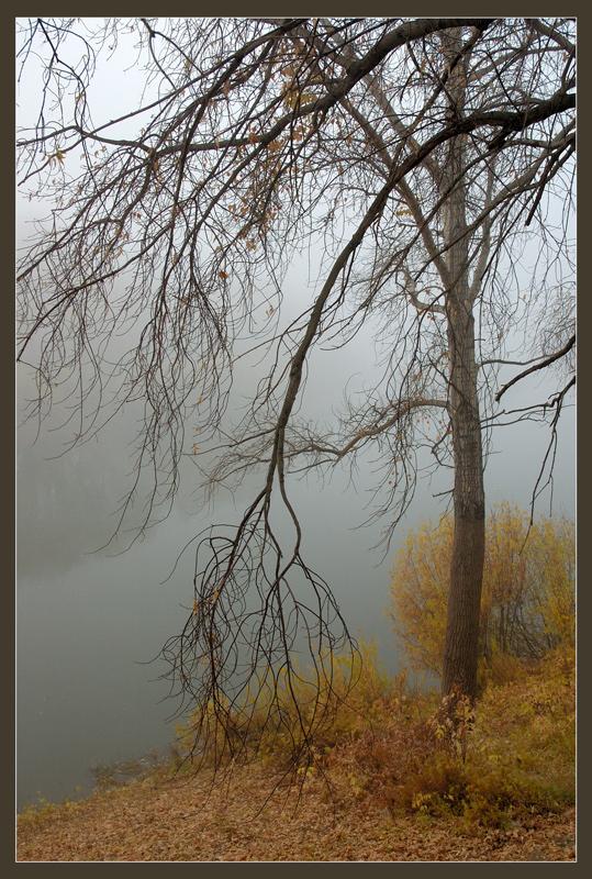 """фото """"Бессонница"""" метки: пейзаж, осень"""