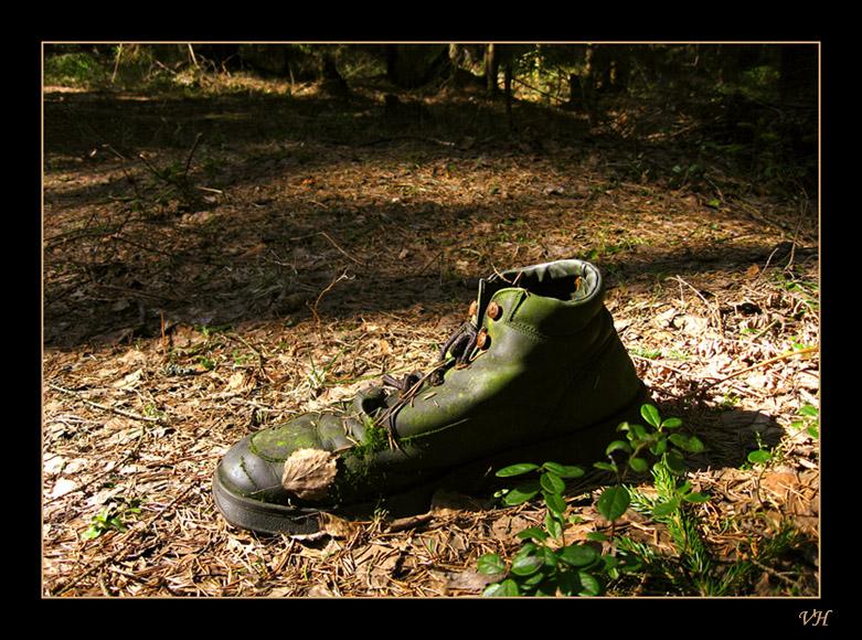 """фото """"Чей туфля?"""" метки: разное, юмор,"""