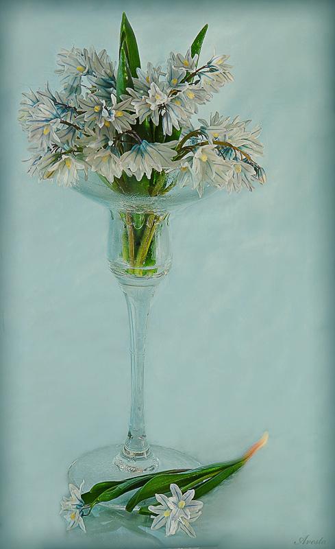 "фото ""Весна"" метки: натюрморт,"