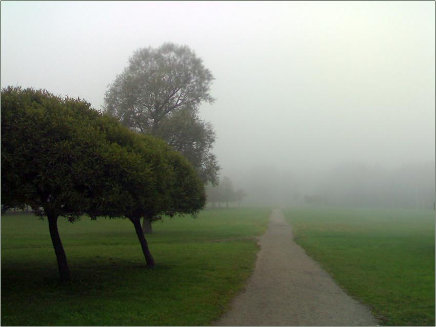 "фото ""На утреннем променаде"" метки: пейзаж,"