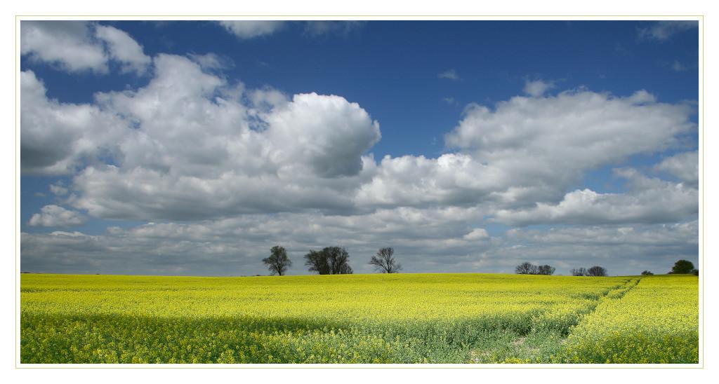 """фото """"spring"""" метки: пейзаж, облака"""