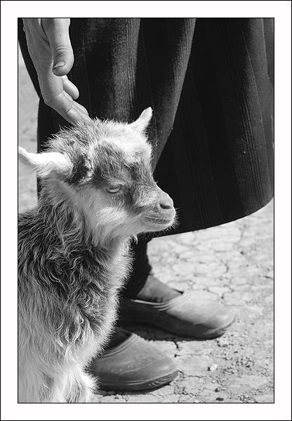 """фото """"After Easter"""" метки: черно-белые,"""
