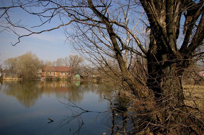 """фото """"Дом у воды."""" метки: пейзаж, весна, вода"""