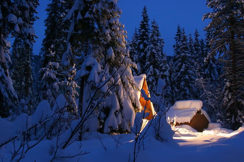 """фото """"Завалило.."""" метки: пейзаж, зима, лес"""