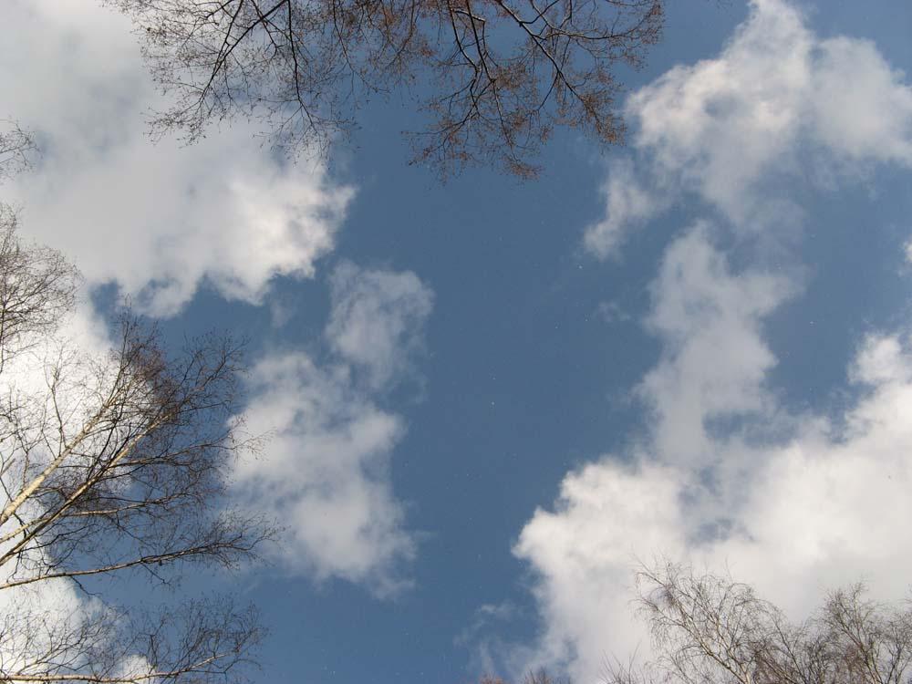"фото ""небо"" метки: ,"