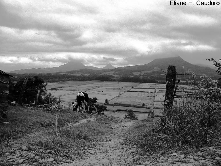 """фото """"***"""" метки: пейзаж, черно-белые, горы"""