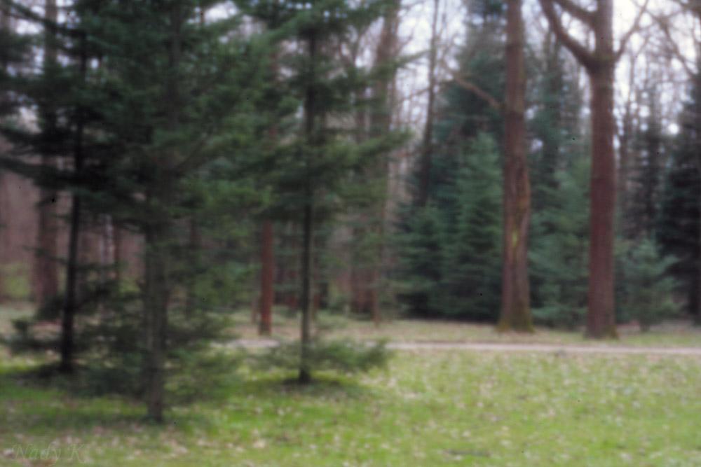 """photo """"penhole"""" tags: landscape, spring"""