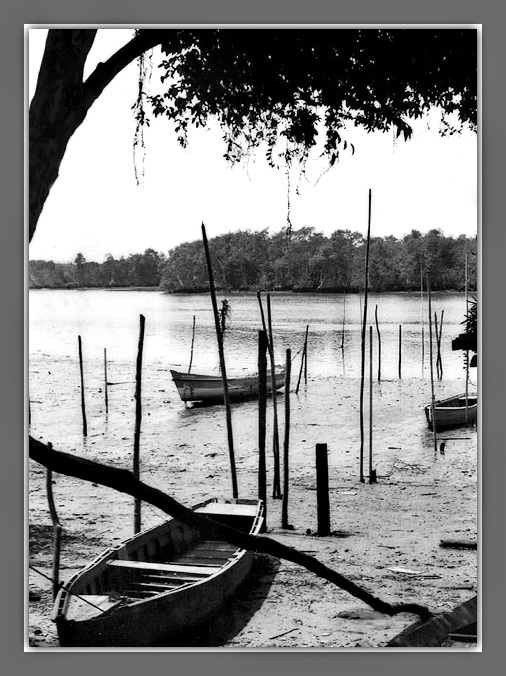 """photo """"Old boats"""" tags: black&white,"""