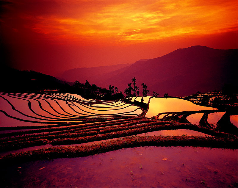"photo ""....."" tags: travel, Asia"