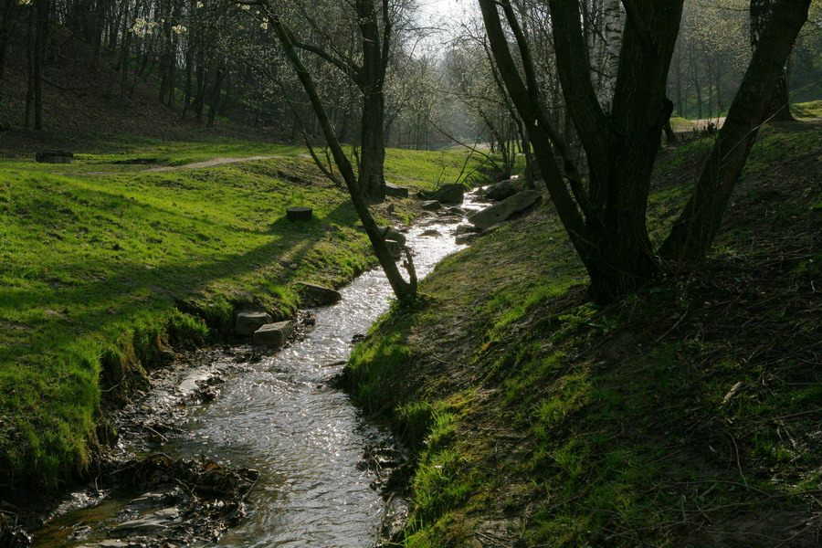 """photo """"Brook"""" tags: landscape, nature, water"""