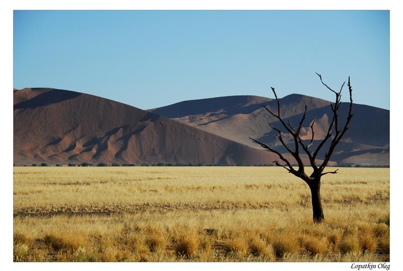 "photo ""Sossusvlei"" tags: landscape, travel, Africa"