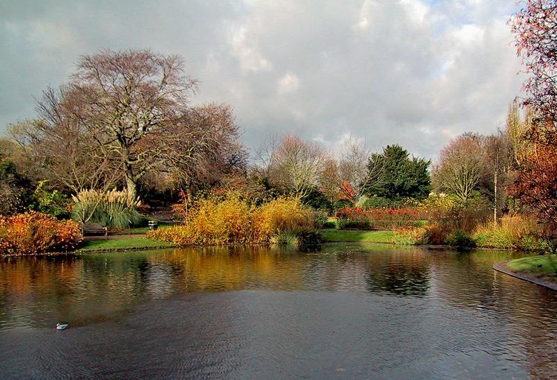 "photo ""Nature Pond"" tags: landscape, spring"