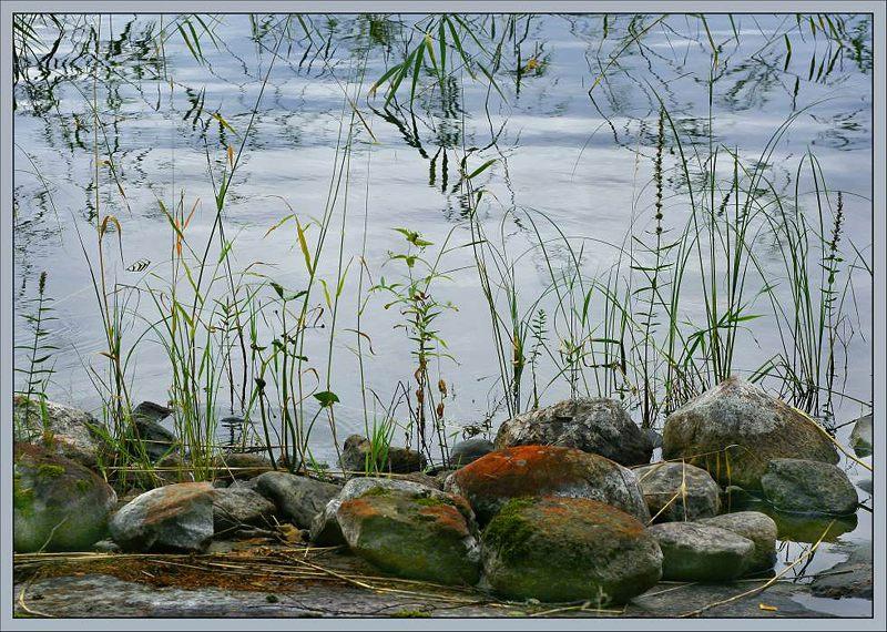 "фото ""Who painted those stones..."" метки: природа, цветы"