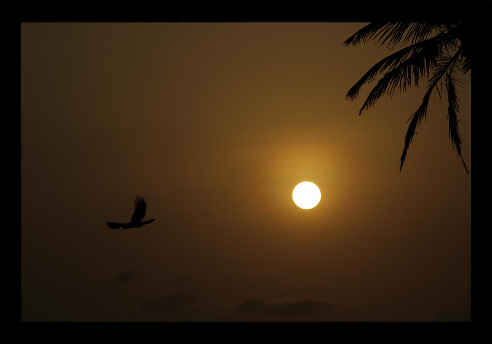 """фото """"***"""" метки: пейзаж, природа, закат"""