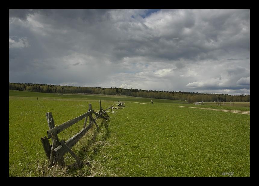 "фото ""на окраине"" метки: пейзаж, лето"