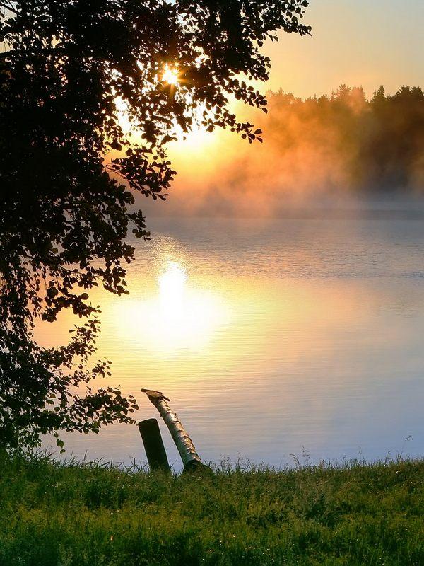 """фото """"Утро"""" метки: ,"""