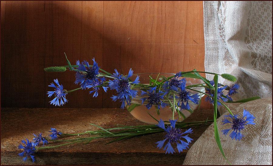 http://www.photoforum.ru/f/photo/000/370/370838_36.jpg