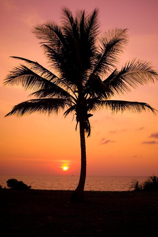 """фото """"Golden Sunset"""" метки: пейзаж, закат"""