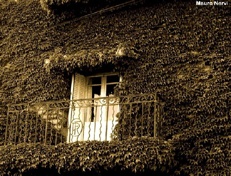 "фото ""windows"" метки: город,"