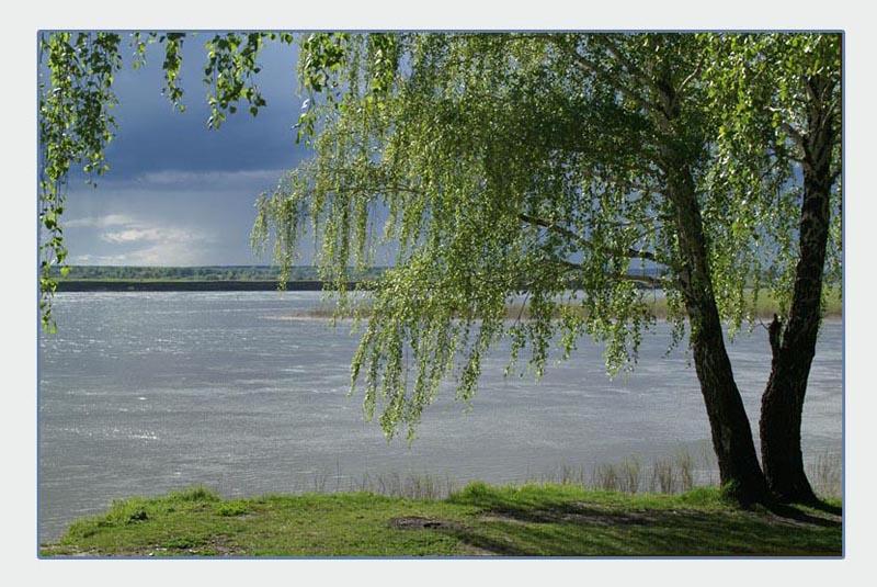 """фото """"И снова будет дождь"""" метки: пейзаж, вода, лес"""