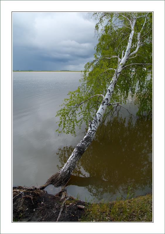 """фото """"Ближе к воде"""" метки: пейзаж, вода, лето"""