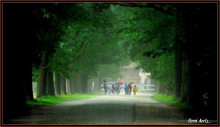 """фото """"rainy day in Belgium"""" метки: пейзаж, репортаж, лето"""