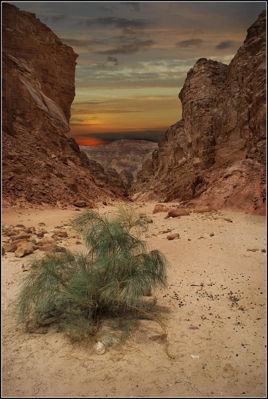"""фото """"Синайские хроники 5"""" метки: путешествия, пейзаж, горы"""