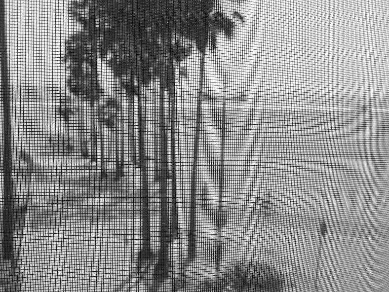 """фото """"Squared World"""" метки: черно-белые,"""