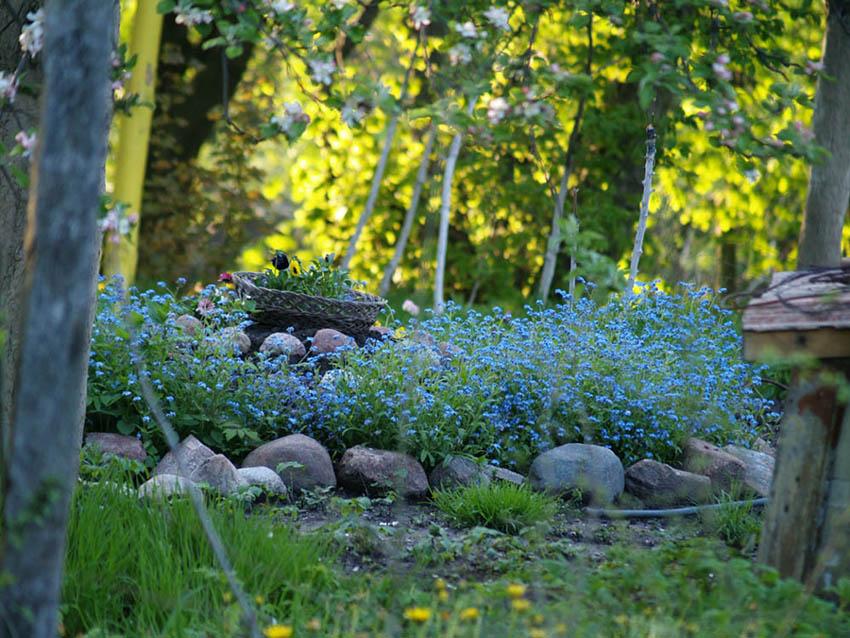 "фото ""Май"" метки: пейзаж, весна"