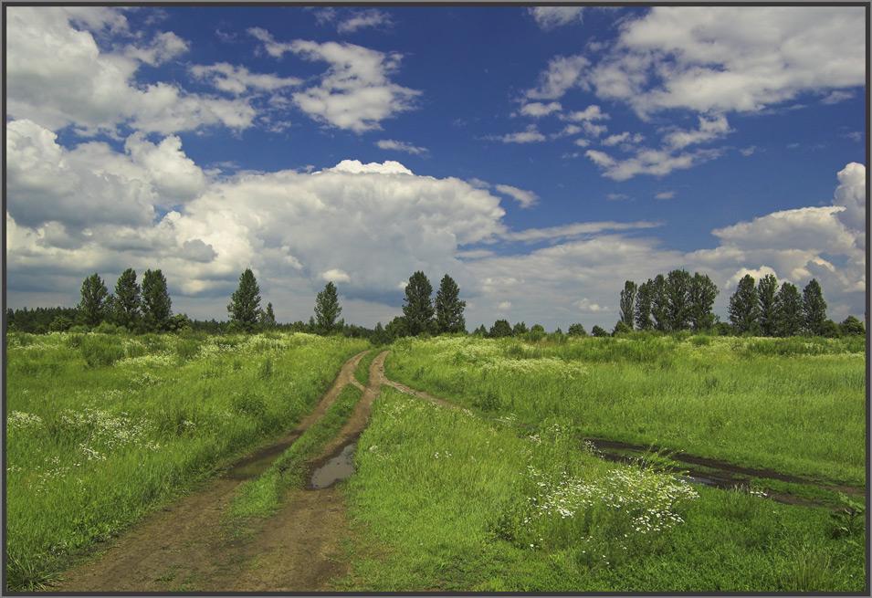 """фото """"Мой край"""" метки: пейзаж,"""