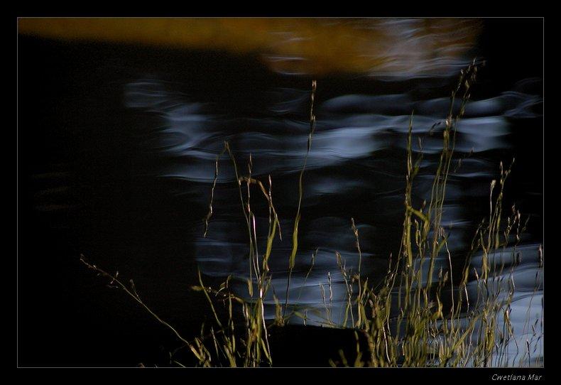 """фото """"Японский сад"""" метки: пейзаж, вода"""