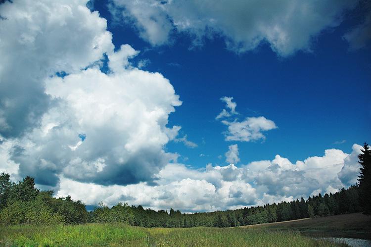 """фото """"дуга"""" метки: пейзаж, лето"""
