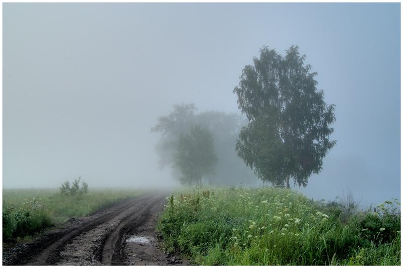"""фото """"Июльский туман"""" метки: пейзаж, лето"""