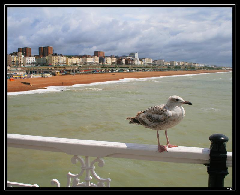 "фото ""Brighton Peer"" метки: пейзаж, путешествия, Европа, лето"